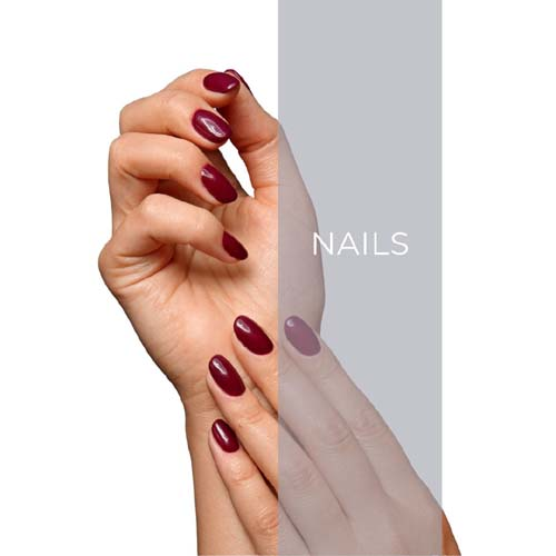nails home page